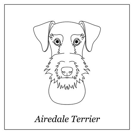 Isolated black outline head of airedale terrier on white background. Line cartoon breed dog portrait Illustration