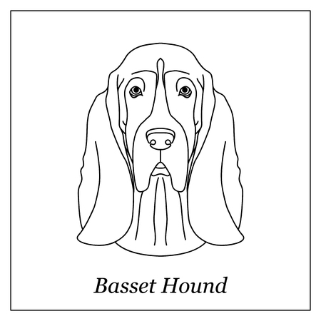 Isolated black outline head of basset hound on white background. Line cartoon breed dog portrait