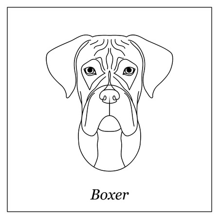 Isolated black outline head of german boxer on white background. Line cartoon breed dog portrait