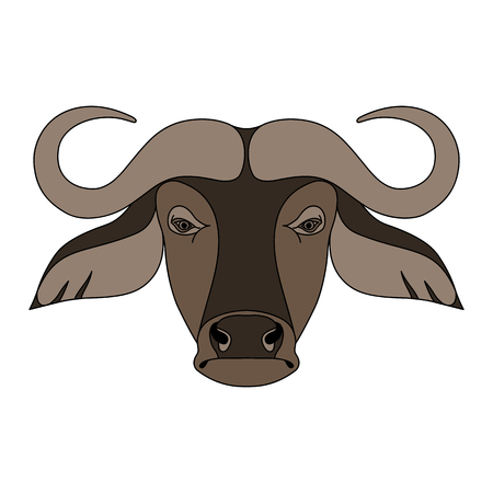 Isolated head of buffalo on white background. Colored cartoon face portrait