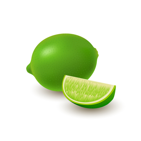 Isolated colored group of lime, slice and whole juicy fruit with shadow on white background. Realistic citrus