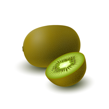 Isolated realistic colored whole juicy kiwi and half green kiwi with shadow on white background. Side view