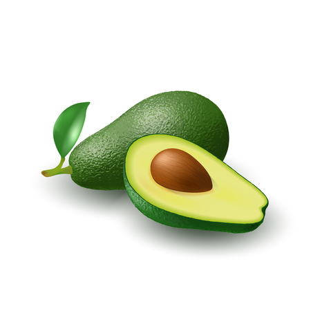 Isolated realistic colored whole juicy avocado with stick and green leaf and half avocado with pit with shadow on white background. Side view