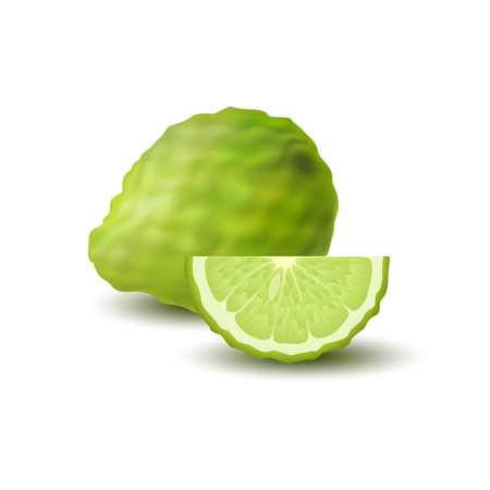 Isolated colored green whole and slice of juicy bergamot, kaffir lime with shadow on white background. Realistic wedge citrus fruit.