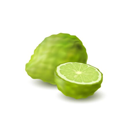 Isolated colored green whole and half of juicy bergamot, kaffir lime with shadow on white background. Realistic citrus fruit. Vettoriali