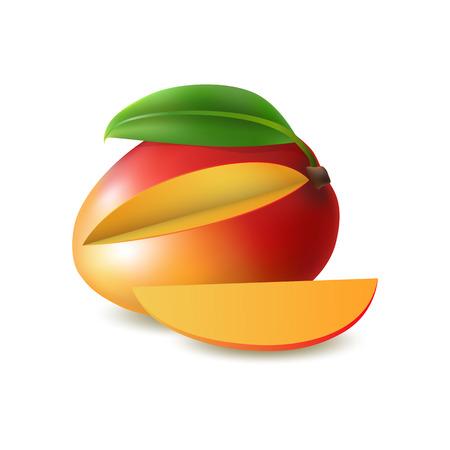 Red fruit image illustration  イラスト・ベクター素材