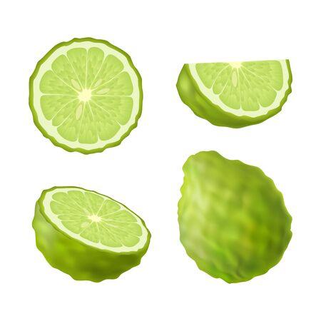 Bergamot lime image illustration