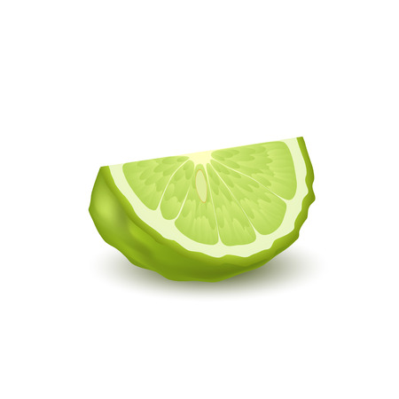 Isolated colorfull green slice of juicy bergamot, kaffir lime with shadow on white background. Realistic wedge citrus fruit Vettoriali