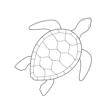 Tortuga verde de mar monocromática de contorno negro aislado sobre fondo blanco. Líneas curvas. Página de libro para colorear