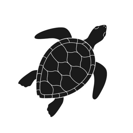 Isolated black silhouette of marine green turtle with white lines on white background. Top view. View from above