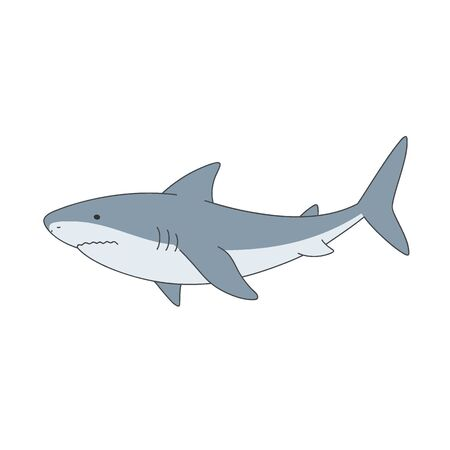 Isolated gray shark on white background. Sea animal, fish. Colorful flat shark