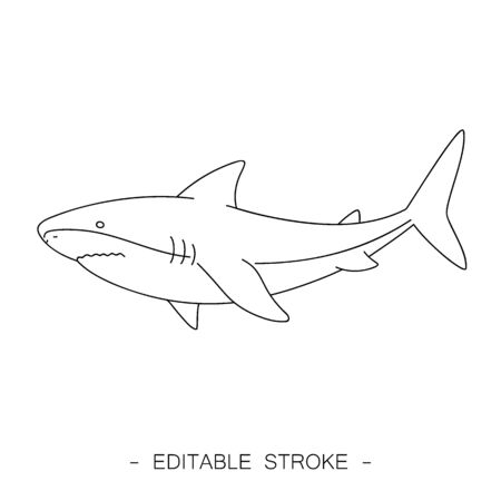 Isolated black outline shark on white background. Line sea animal, fish