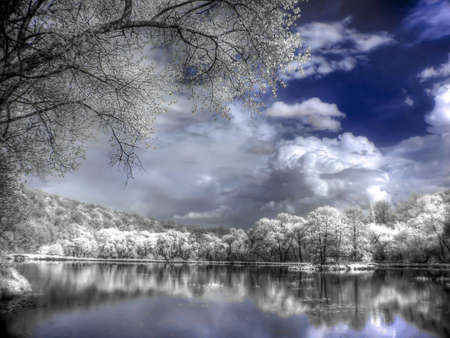 A forest lake is in an infra-red color, shoot special photocamera
