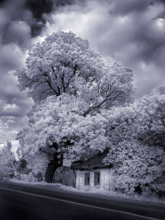 house at a road is in an infra-red color, shoot special photocamera