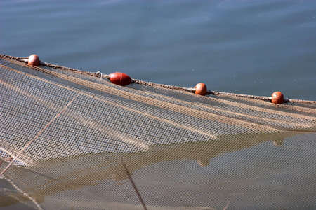 Fishing Net in water. fishing of trout Stock Photo - 4775085