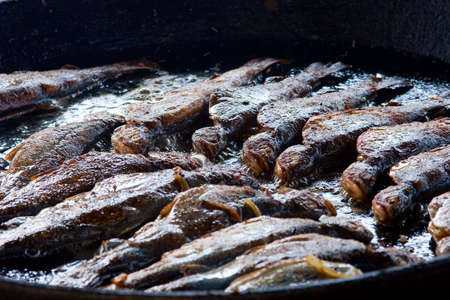 trout  broils on a frying pan