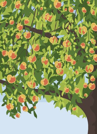 apple green: apple tree with apples background Illustration