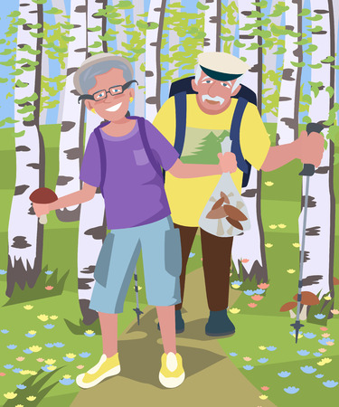 couple hiking: aged couple hiking at birch grove - colorful vector cartoon illustration