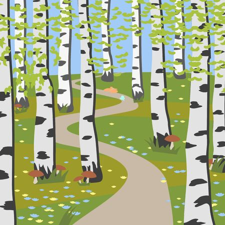 grove: birch grove with mushrooms - colorful vector background illustration Illustration