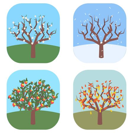 Apple tree at four seasons vector illustration.