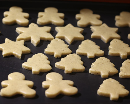 domestic production: Domestic production of Gingerbread Cookie. Stock Photo