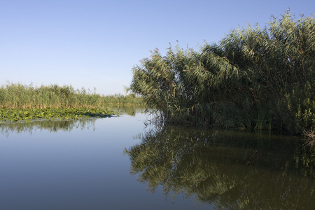 delta: Danube delta landscape in Romania. Stock Photo
