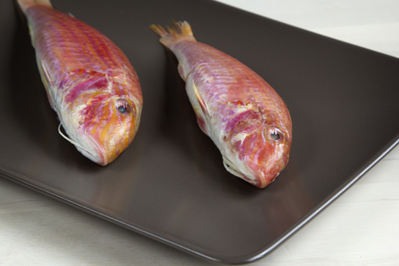 goatfish: Raw red mullet on a plate.