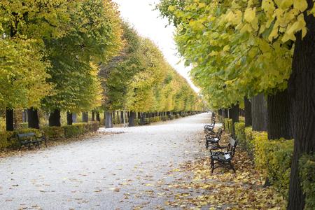 Autumn in the Park. Vienna, Austria Reklamní fotografie