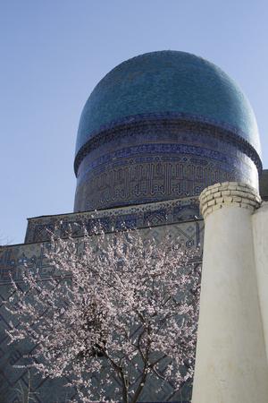 Spring in Uzbekistan. The spring festival of Navruz. Flowering trees near the mosque Bibi Khanum, Samarkand