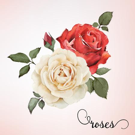 장미, 수채화, 꽃다발 인사말 카드, 결혼식 초대 카드, 생일 및 다른 휴일과 여름을 배경으로 사용할 수 있습니다. 벡터.