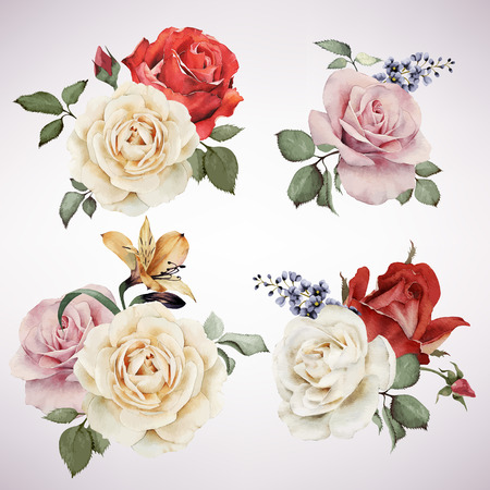 conjunto: Conjunto de ramos de flores vector de rosas, acuarela, se puede utilizar como tarjeta de felicitación, tarjeta de invitación para la boda, cumpleaños y otras fiestas y el verano de fondo.