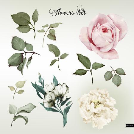 the flowers: Flores y hojas, acuarela, se puede utilizar como tarjeta de felicitaci�n, tarjeta de invitaci�n para la boda, cumplea�os y otras fiestas y el verano de fondo. Ilustraci�n del vector.