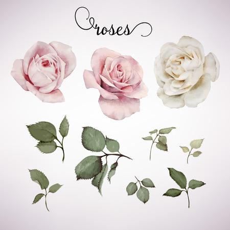 花や葉、水彩、グリーティング カード、結婚式、誕生日および他の休日や夏の背景の招待状カードとして使用できます。ベクトルの図。  イラスト・ベクター素材