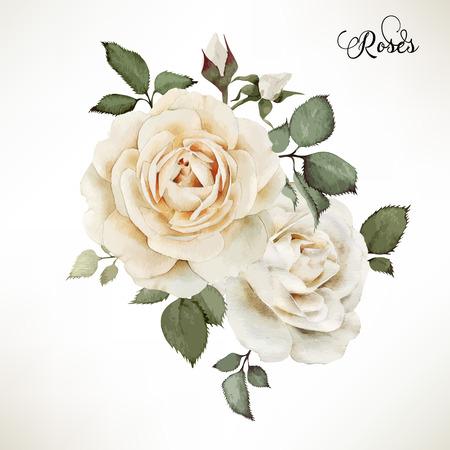 blanco: Ramo de rosas, acuarela, se puede utilizar como tarjeta de felicitación, tarjeta de invitación para la boda, cumpleaños y otras fiestas y el verano de fondo. Vector.
