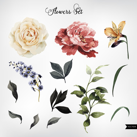 Flowers and leaves, watercolor, can be used as greeting card, invitation card for wedding, birthday and other holiday and  summer background. Vector illustration.  イラスト・ベクター素材