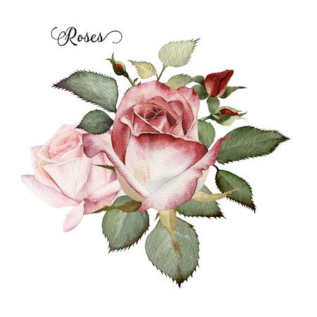 aquarelle: Bouquet de roses, aquarelle, peut être utilisé comme carte de voeux, carte d'invitation pour le mariage, anniversaire et un autre jour férié et le fond d'été
