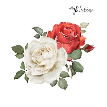 Bouquet of roses, watercolor, can be used as greeting card, invitation card for wedding, birthday and other holiday and  summer background. 스톡 콘텐츠