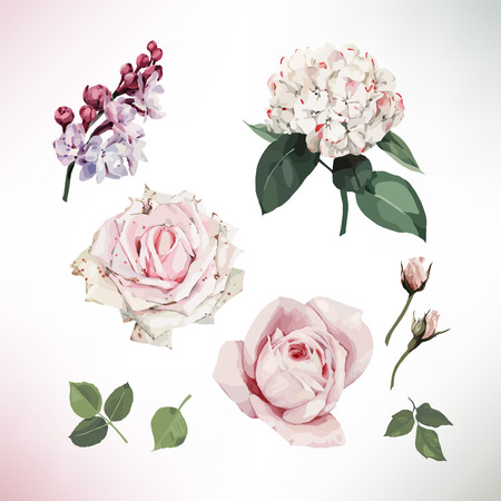 Grußkarte mit Blumen . Vektor Standard-Bild - 96114092