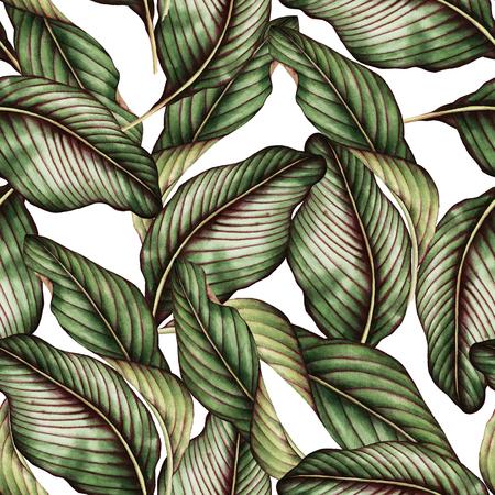 熱帯の葉、水彩画とシームレスな花柄。 写真素材 - 96395476