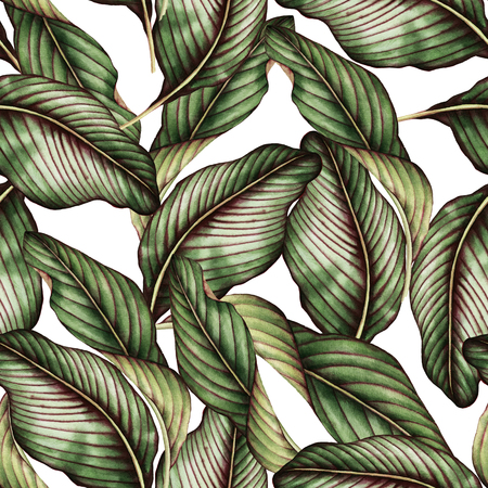 Seamless floral pattern with tropical leaves, watercolor.  Stok Fotoğraf