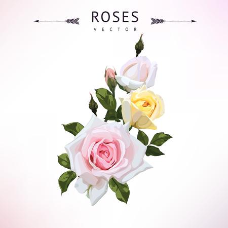 ピンクと黄色のバラの花束ベクター。