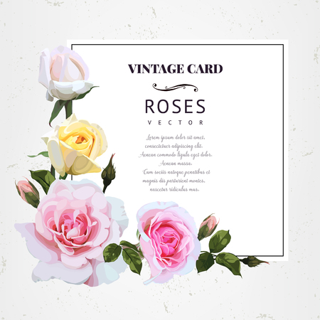 Greeting card with roses. Vector illustration. Stok Fotoğraf - 97553497