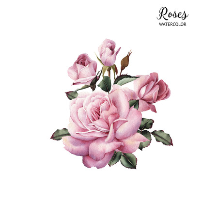 Bouquet of roses, watercolor, can be used as greeting card, invitation card for wedding, birthday and other holiday and  summer background. Banco de Imagens