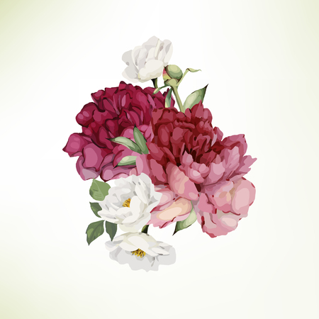 Bouquet of peonies , watercolor, can be used as greeting card, invitation card for wedding, birthday and other holiday and  summer background. Vector.
