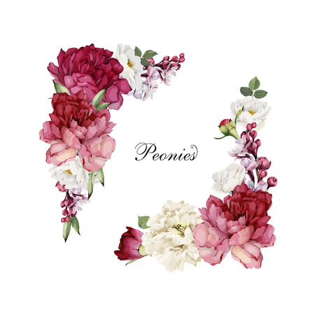 Greeting card with peonies, watercolor, can be used as invitation card for wedding, birthday and other holiday and  summer background. Vector illustration. Ilustração