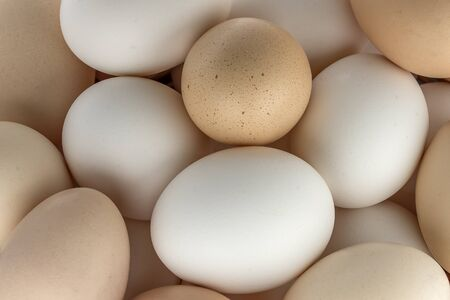 smilie: Small group of eggs of different colours