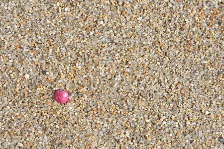 briny: Sea Beach. Ocean.