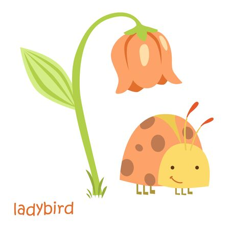 ladybird: Ladybug isolated. Drawing ladybug for a child Stock Photo