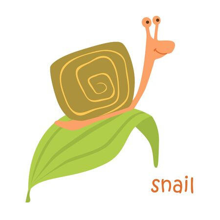 Snail isolated. Drawing snail for a child