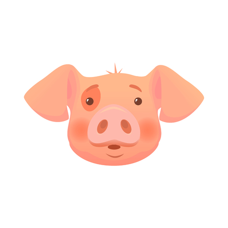 Cute pig cartoon. Pig head isolated.
